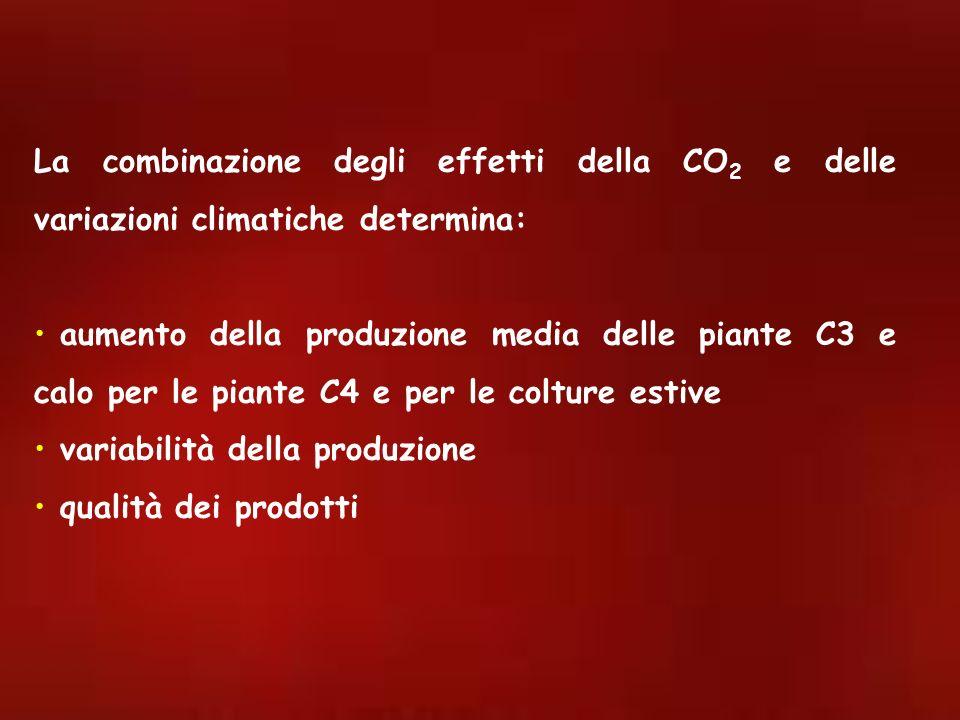 La combinazione degli effetti della CO 2 e delle variazioni climatiche determina: aumento della produzione media delle piante C3 e calo per le piante