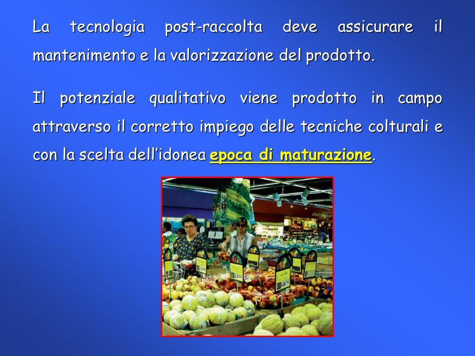 Andamento della durezza rilevato al banco di vendita di pere Argentine (William) sottoposte a maturazione controllata