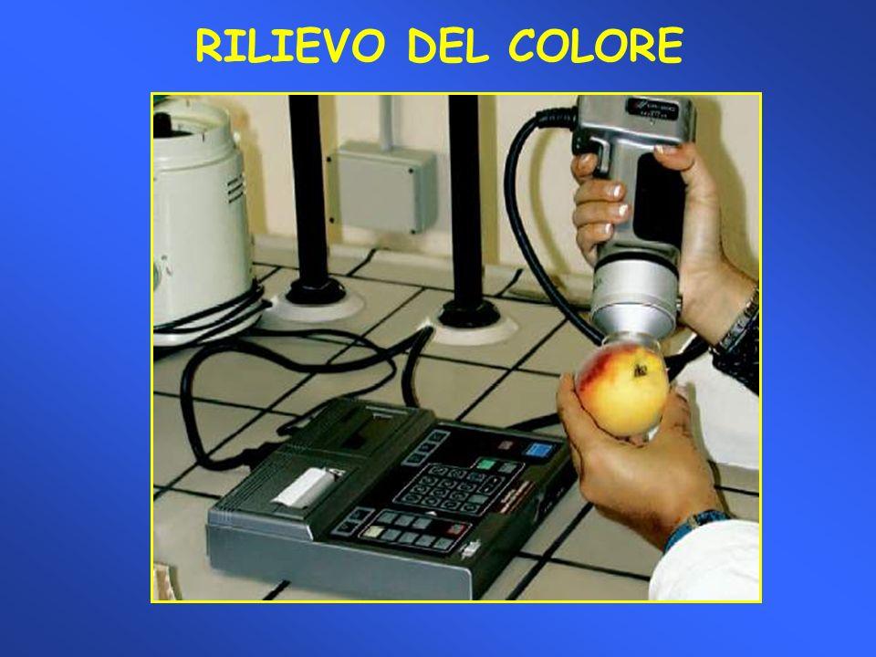 Test dello iodio per la determinazione della degradazione dellamido nelle mele Categorie di degradazione dellamido nelle mele.