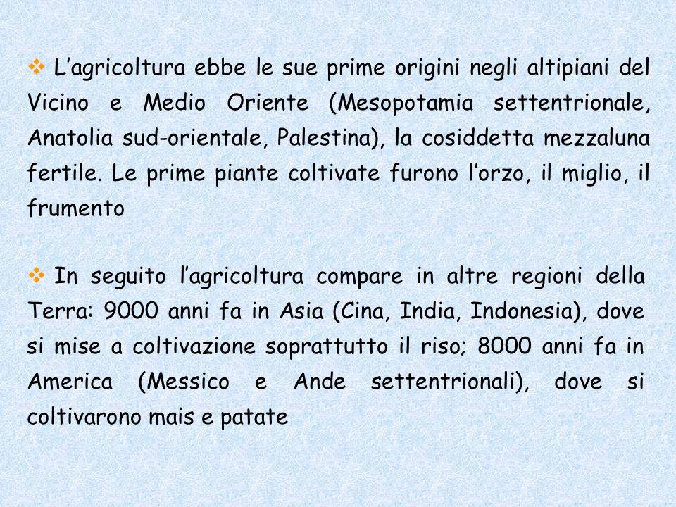 Lagricoltura ebbe le sue prime origini negli altipiani del Vicino e Medio Oriente (Mesopotamia settentrionale, Anatolia sud-orientale, Palestina), la
