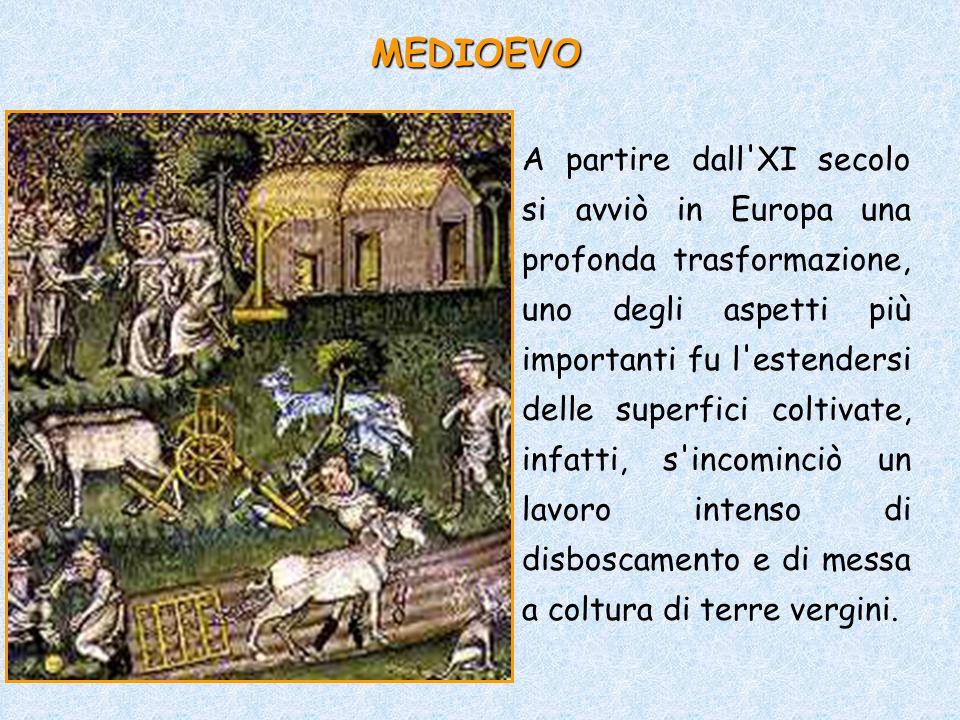 A partire dall'XI secolo si avviò in Europa una profonda trasformazione, uno degli aspetti più importanti fu l'estendersi delle superfici coltivate, i