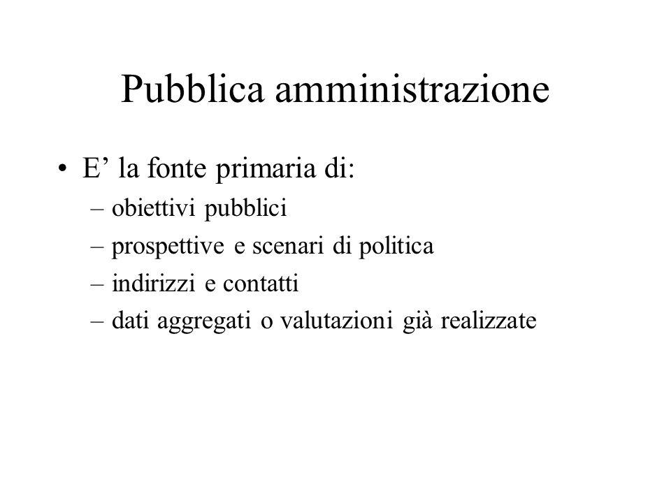 Pubblica amministrazione E la fonte primaria di: –obiettivi pubblici –prospettive e scenari di politica –indirizzi e contatti –dati aggregati o valutazioni già realizzate