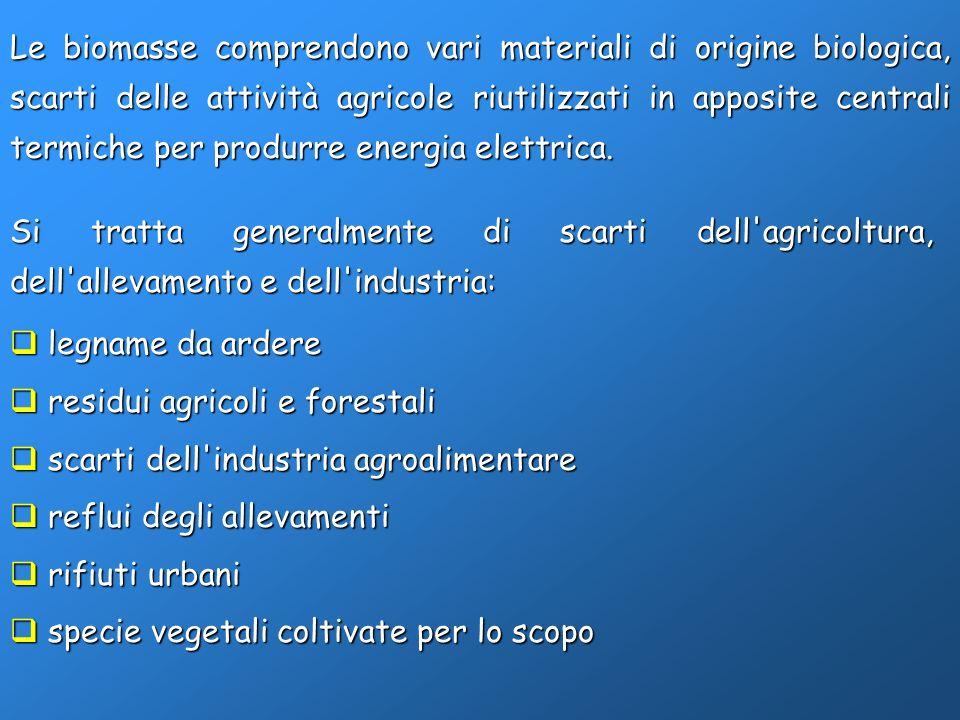 Le biomasse comprendono vari materiali di origine biologica, scarti delle attività agricole riutilizzati in apposite centrali termiche per produrre en