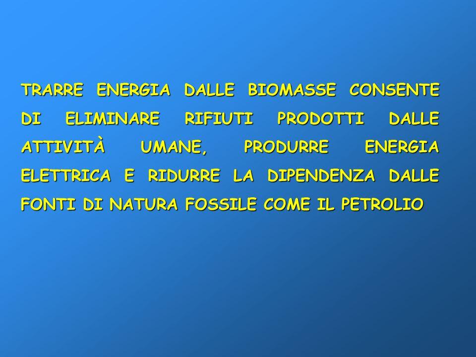 TRARRE ENERGIA DALLE BIOMASSE CONSENTE DI ELIMINARE RIFIUTI PRODOTTI DALLE ATTIVITÀ UMANE, PRODURRE ENERGIA ELETTRICA E RIDURRE LA DIPENDENZA DALLE FO
