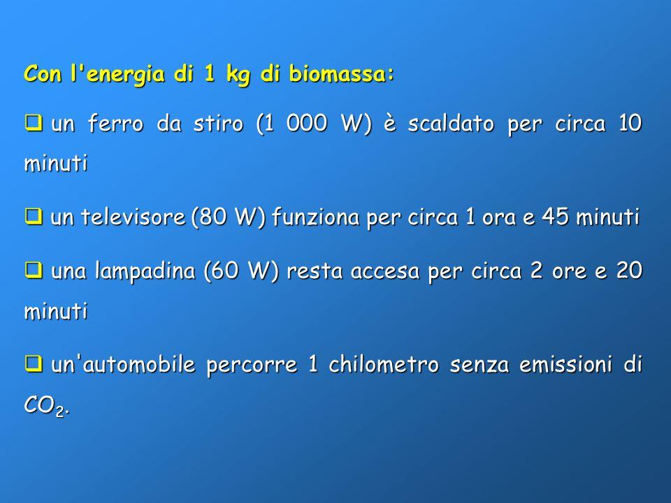 Con l'energia di 1 kg di biomassa: un ferro da stiro (1 000 W) è scaldato per circa 10 minuti un ferro da stiro (1 000 W) è scaldato per circa 10 minu