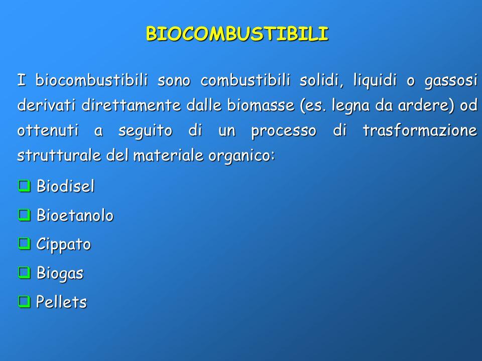 I biocombustibili sono combustibili solidi, liquidi o gassosi derivati direttamente dalle biomasse (es. legna da ardere) od ottenuti a seguito di un p
