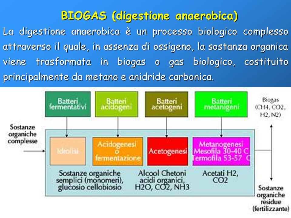La digestione anaerobica è un processo biologico complesso attraverso il quale, in assenza di ossigeno, la sostanza organica viene trasformata in biog