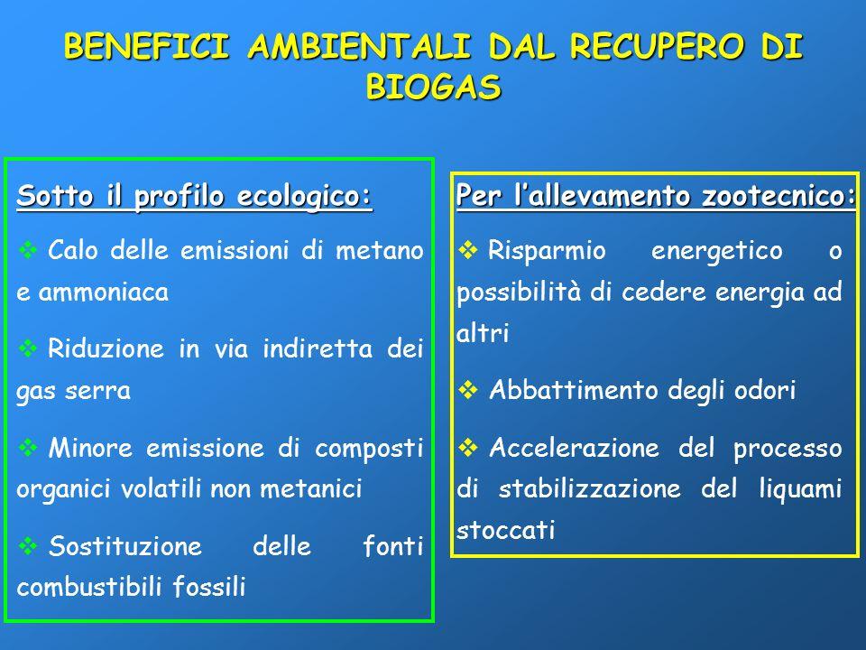 BENEFICI AMBIENTALI DAL RECUPERO DI BIOGAS Sotto il profilo ecologico: Calo delle emissioni di metano e ammoniaca Riduzione in via indiretta dei gas s