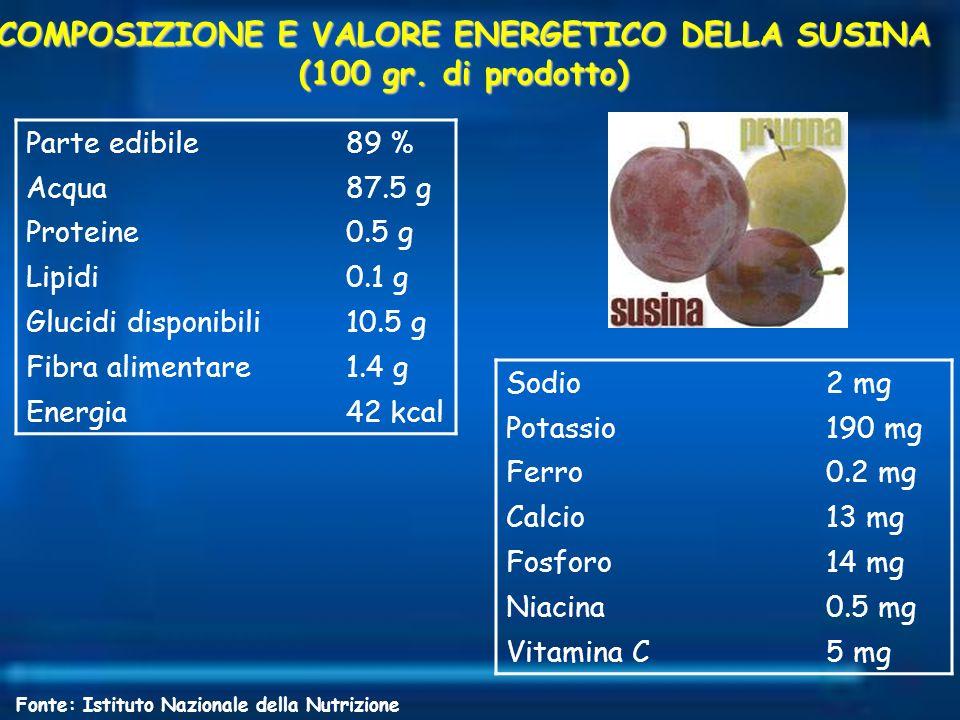 COMPOSIZIONE E VALORE ENERGETICO DELLA SUSINA (100 gr. di prodotto) Parte edibile89 % Acqua87.5 g Proteine0.5 g Lipidi0.1 g Glucidi disponibili10.5 g
