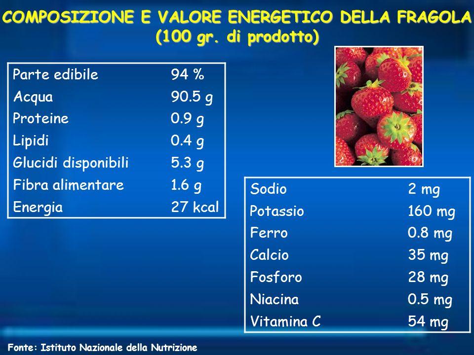 COMPOSIZIONE E VALORE ENERGETICO DELLA FRAGOLA (100 gr. di prodotto) Parte edibile94 % Acqua90.5 g Proteine0.9 g Lipidi0.4 g Glucidi disponibili5.3 g