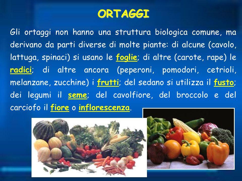 Gli ortaggi non hanno una struttura biologica comune, ma derivano da parti diverse di molte piante: di alcune (cavolo, lattuga, spinaci) si usano le f