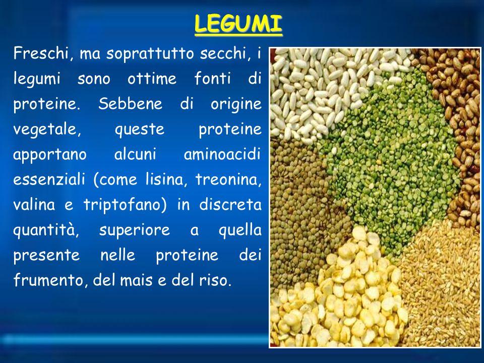 Freschi, ma soprattutto secchi, i legumi sono ottime fonti di proteine. Sebbene di origine vegetale, queste proteine apportano alcuni aminoacidi essen
