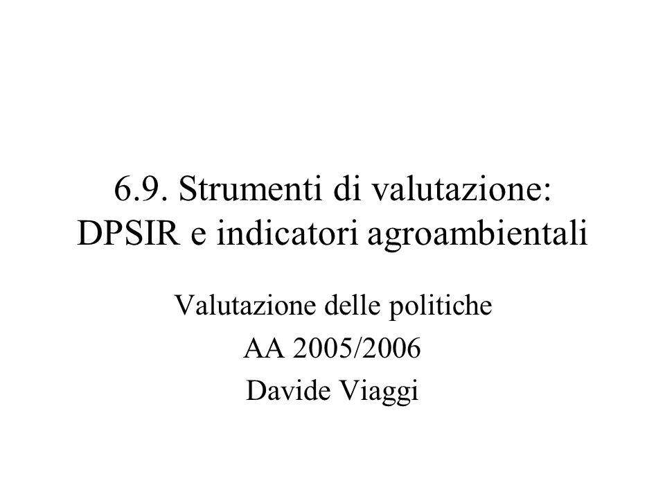 6.9. Strumenti di valutazione: DPSIR e indicatori agroambientali Valutazione delle politiche AA 2005/2006 Davide Viaggi