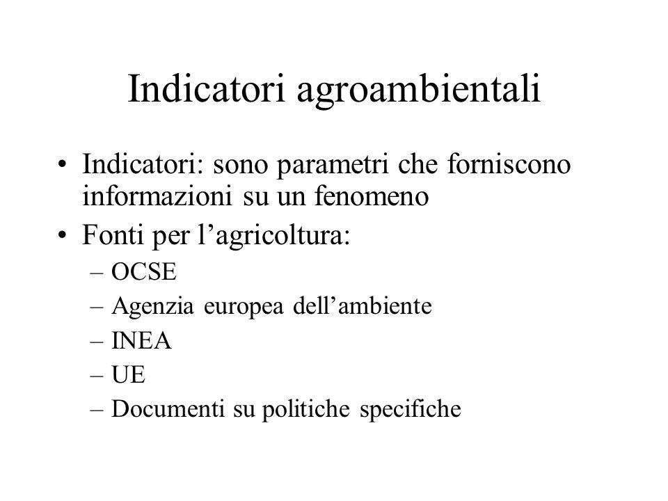 Indicatori agroambientali Indicatori: sono parametri che forniscono informazioni su un fenomeno Fonti per lagricoltura: –OCSE –Agenzia europea dellamb