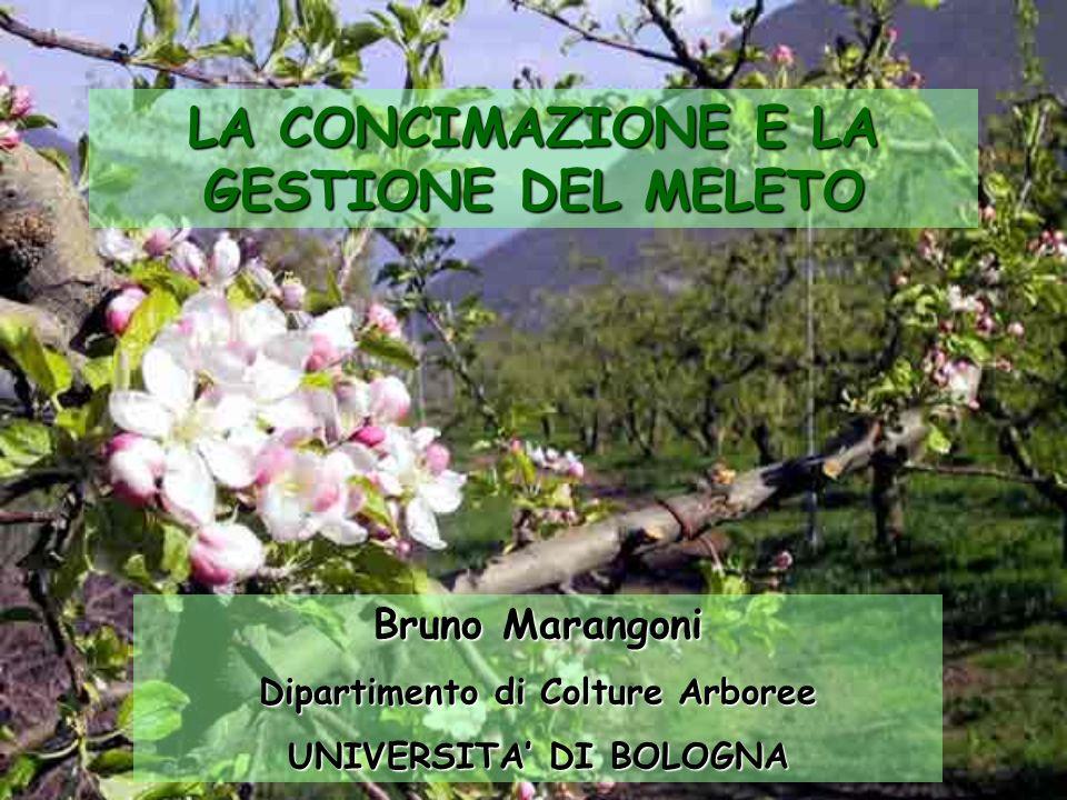 Bruno Marangoni Dipartimento di Colture Arboree UNIVERSITA DI BOLOGNA LA CONCIMAZIONE E LA GESTIONE DEL MELETO