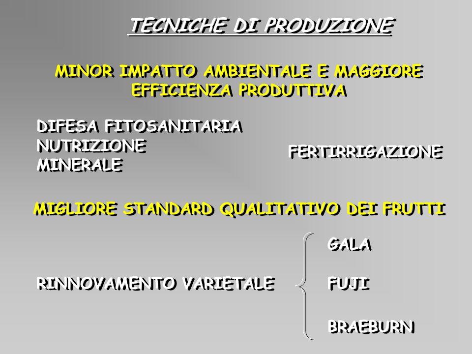 BIOMASSA (S.S.) PRODOTTA ANNUALMENTE DALLERBAIO DA SOVESCIO E DAL PRATO 0.0 2.5 5.0 7.5 10.0 sovescioprato t/ha 9596979899 9596979899 Tot=21.7 Tot=30.0 Giovannini et al., 2001