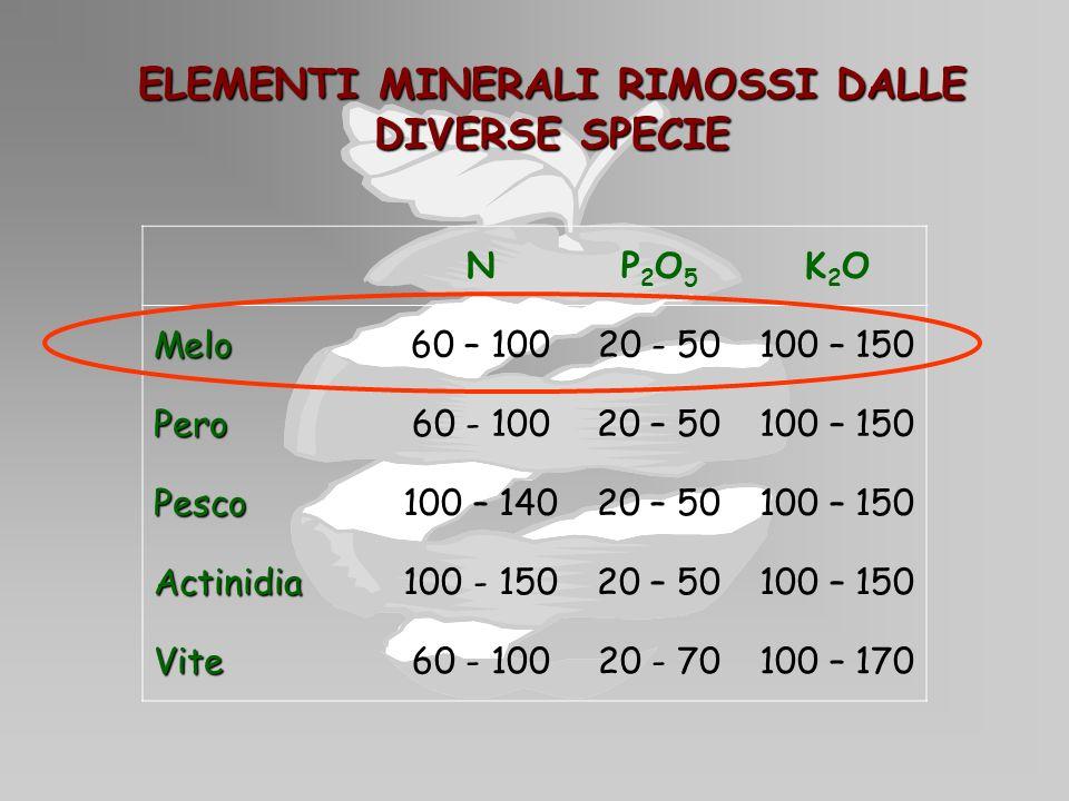 ELEMENTI MINERALI RIMOSSI DALLE DIVERSE SPECIE NP2O5P2O5 K2OK2OMelo60 – 10020 - 50100 – 150 Pero60 - 10020 – 50100 – 150 Pesco100 – 14020 – 50100 – 15