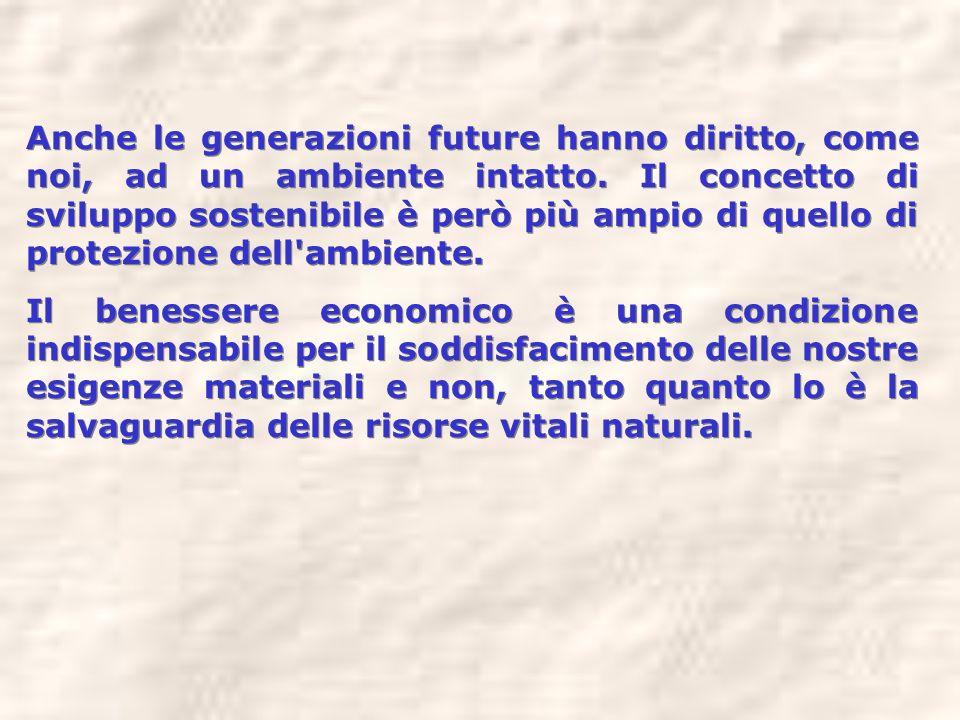 Anche le generazioni future hanno diritto, come noi, ad un ambiente intatto. Il concetto di sviluppo sostenibile è però più ampio di quello di protezi