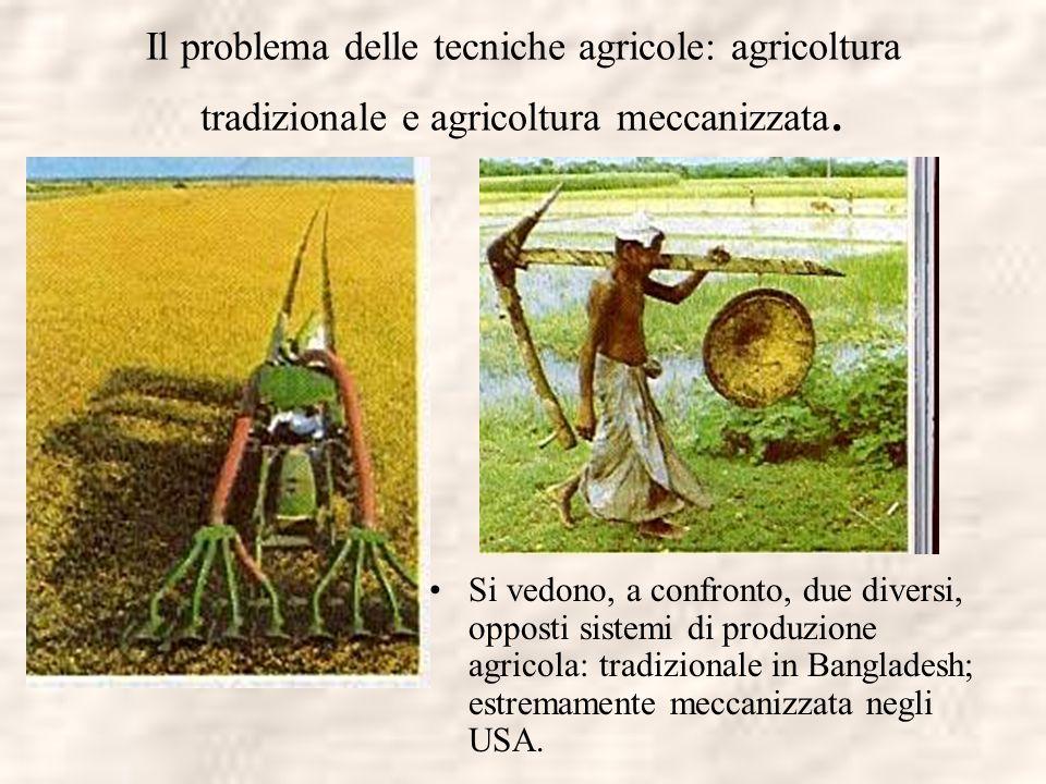 Il problema delle tecniche agricole: agricoltura tradizionale e agricoltura meccanizzata. Si vedono, a confronto, due diversi, opposti sistemi di prod