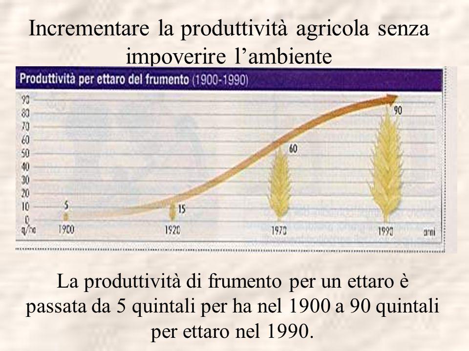 Incrementare la produttività agricola senza impoverire lambiente La produttività di frumento per un ettaro è passata da 5 quintali per ha nel 1900 a 9