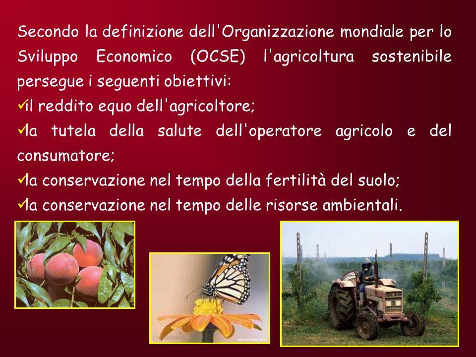 AGRICOLTURA SOSTENIBILE IMPRESA AGRICOLA GESTIONE FAMIGLIARE Uso famiglia Vendita di prodotti Mercato