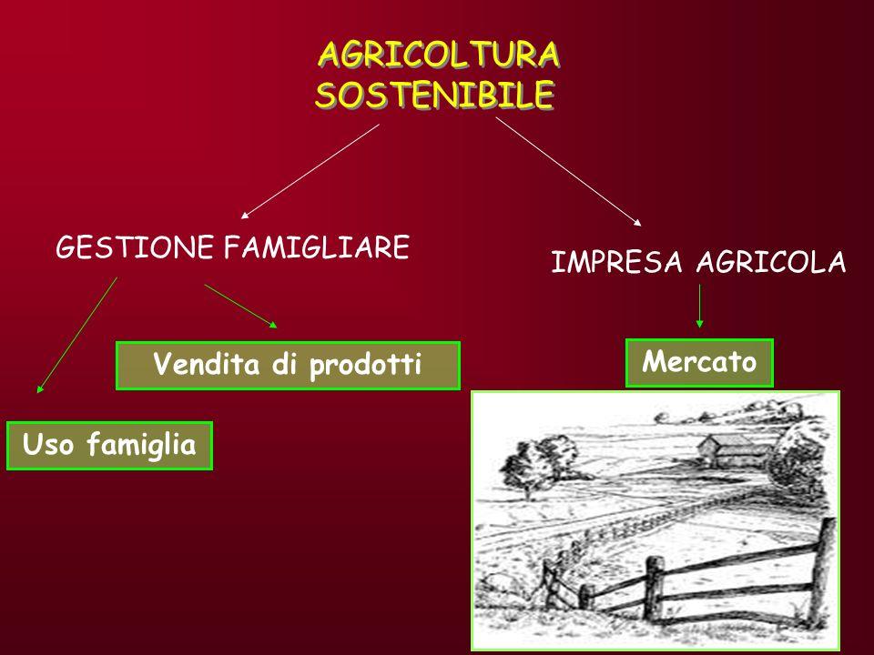 IL BIOLOGICO NEL MONDO: PRODUZIONI LEuropa è la prima produttrice mondiale di agricoltura biologia (2.8% Sau, con prospettive di raggiungimento del 10% entro il 2010) 1986 0,12 milioni di ettari 10.000 aziende 2000 3,6 milioni di ettari 130.000 aziende