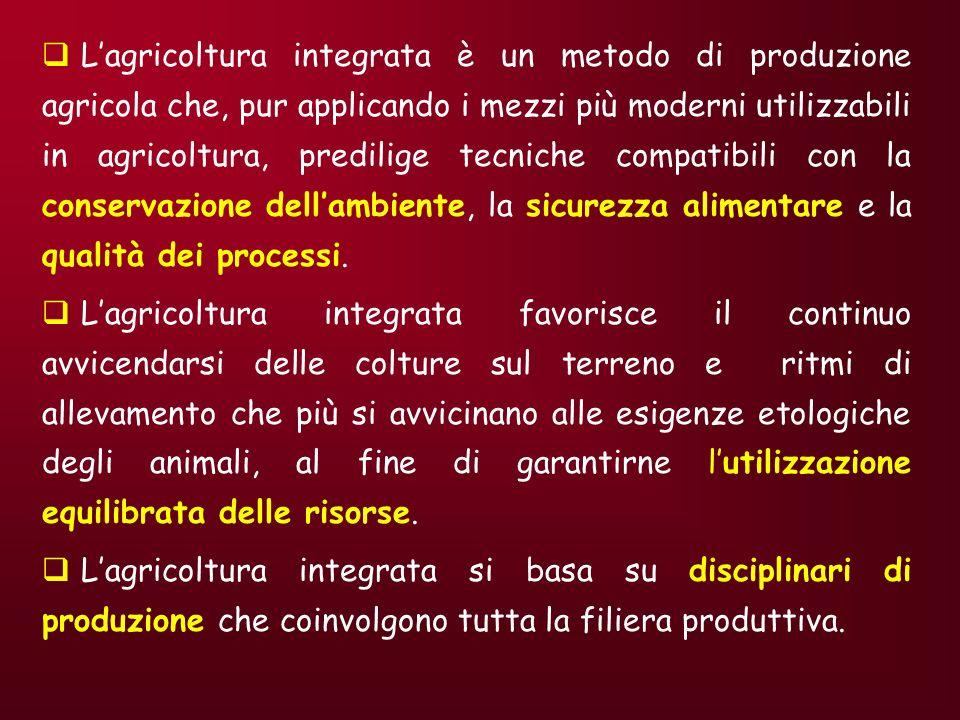 IL MERCATO DEI PRODOTTI BIOLOGICI: LEVOLUZIONE Prima fase: (anni 20-anni 70) prime teorie di agricoltura organica (Steiner), molti agricoltori e una parte del mondo scientifico-culturale le abbracciano.
