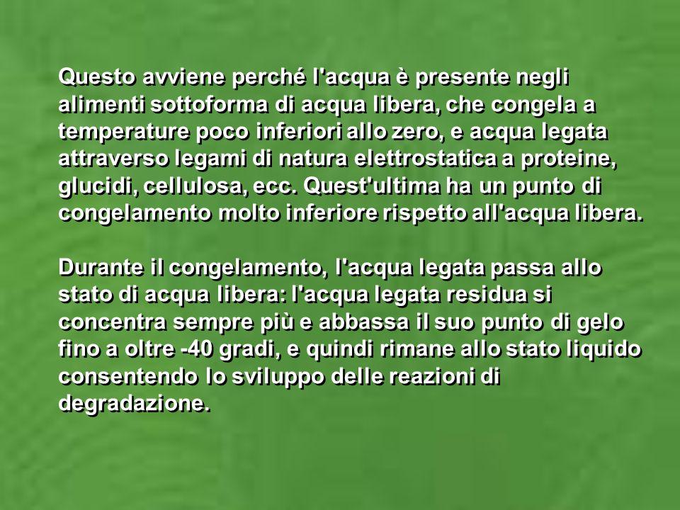 POMODORI PELATI La pelatura dei pomodori si ottiene provocando lo scollamento della buccia dalla polpa mediante azione fisica o chimica (questultima poco utilizzata in Italia prevede dei passaggi dei frutti in soluzioni di NaOH).