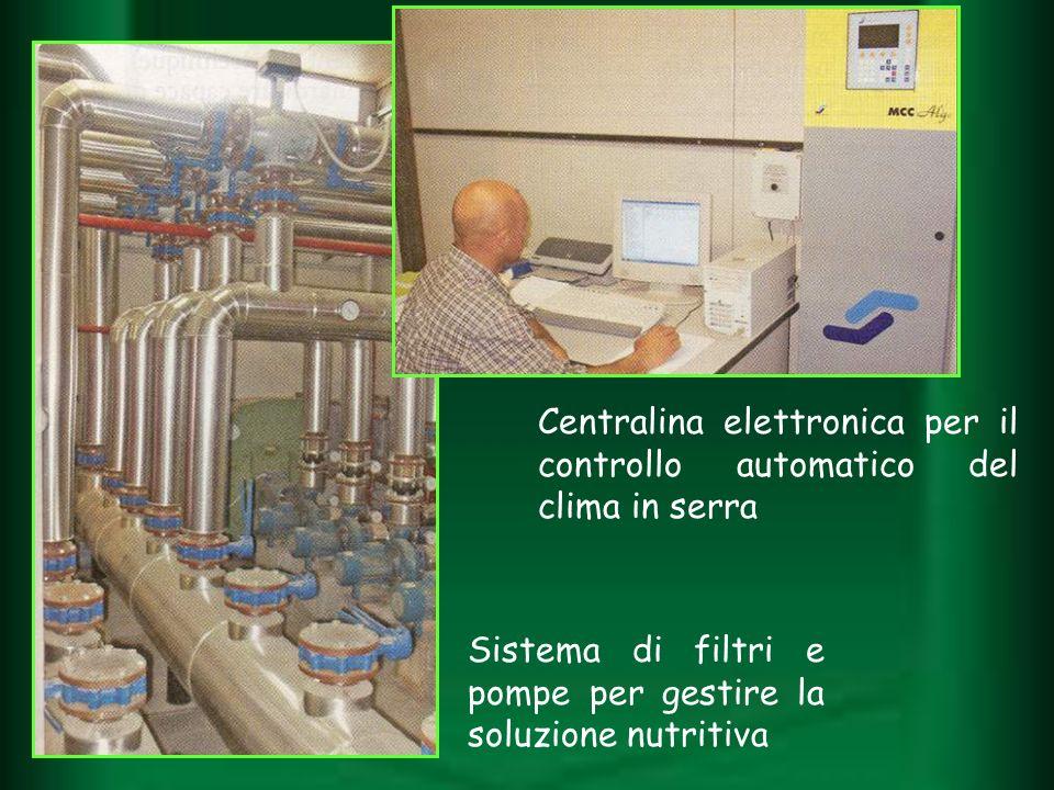 Sistema di filtri e pompe per gestire la soluzione nutritiva Centralina elettronica per il controllo automatico del clima in serra