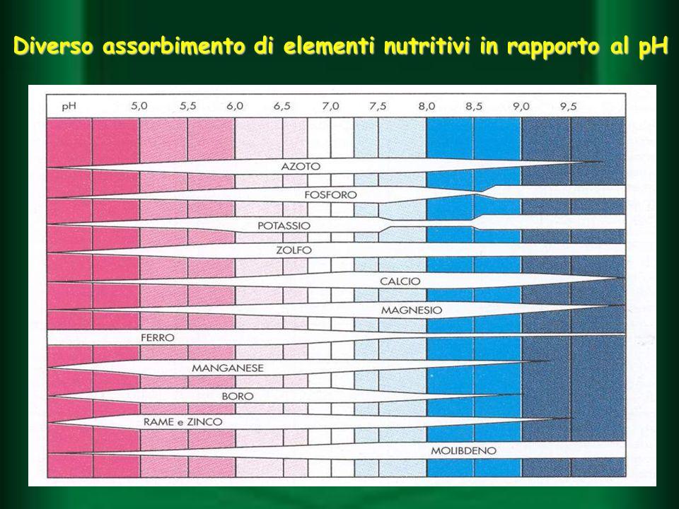 Diverso assorbimento di elementi nutritivi in rapporto al pH