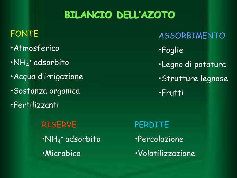 BILANCIO DELLAZOTO FONTE Atmosferico NH 4 + adsorbito Acqua dirrigazione Sostanza organica Fertilizzanti RISERVE NH 4 + adsorbito Microbico ASSORBIMEN