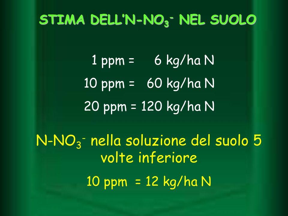 1 ppm = 6 kg/ha N 10 ppm = 60 kg/ha N 20 ppm = 120 kg/ha N N-NO 3 - nella soluzione del suolo 5 volte inferiore 10 ppm = 12 kg/ha N STIMA DELLN-NO 3 -
