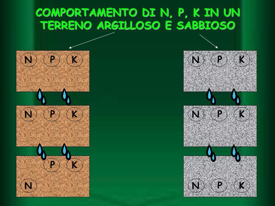 COMPORTAMENTO DI N, P, K IN UN TERRENO ARGILLOSO E SABBIOSO N PK N PK PK NN PK N PK PK N