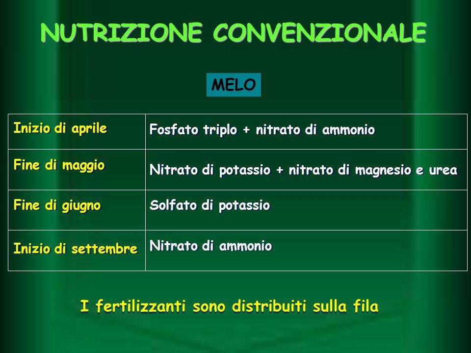 NUTRIZIONE CONVENZIONALE Inizio di settembre Inizio di aprile Fine di maggio Fine di giugno Fosfato triplo + nitrato di ammonio Nitrato di ammonio Sol