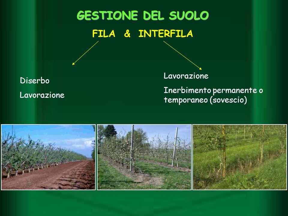 GESTIONE DEL SUOLO FILA & INTERFILA Diserbo Lavorazione Inerbimento permanente o temporaneo (sovescio)