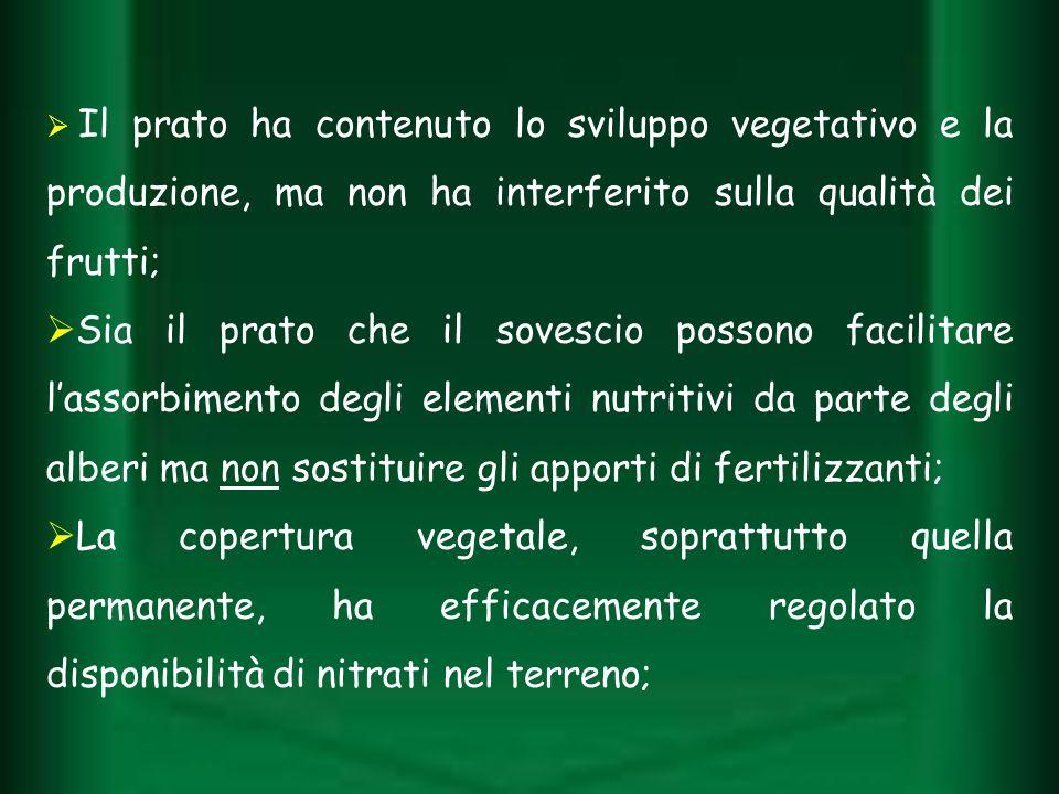 Il prato ha contenuto lo sviluppo vegetativo e la produzione, ma non ha interferito sulla qualità dei frutti; Sia il prato che il sovescio possono fac