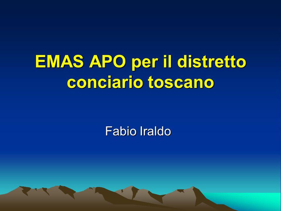 EMAS APO per il distretto conciario toscano Fabio Iraldo