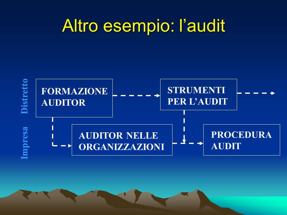 Altro esempio: laudit FORMAZIONE AUDITOR AUDITOR NELLE ORGANIZZAZIONI STRUMENTI PER LAUDIT PROCEDURA AUDIT Distretto Impresa