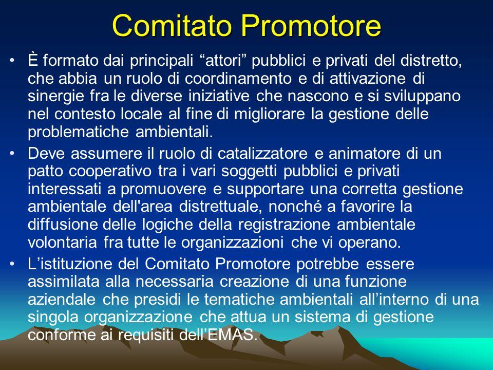 Comitato Promotore È formato dai principali attori pubblici e privati del distretto, che abbia un ruolo di coordinamento e di attivazione di sinergie
