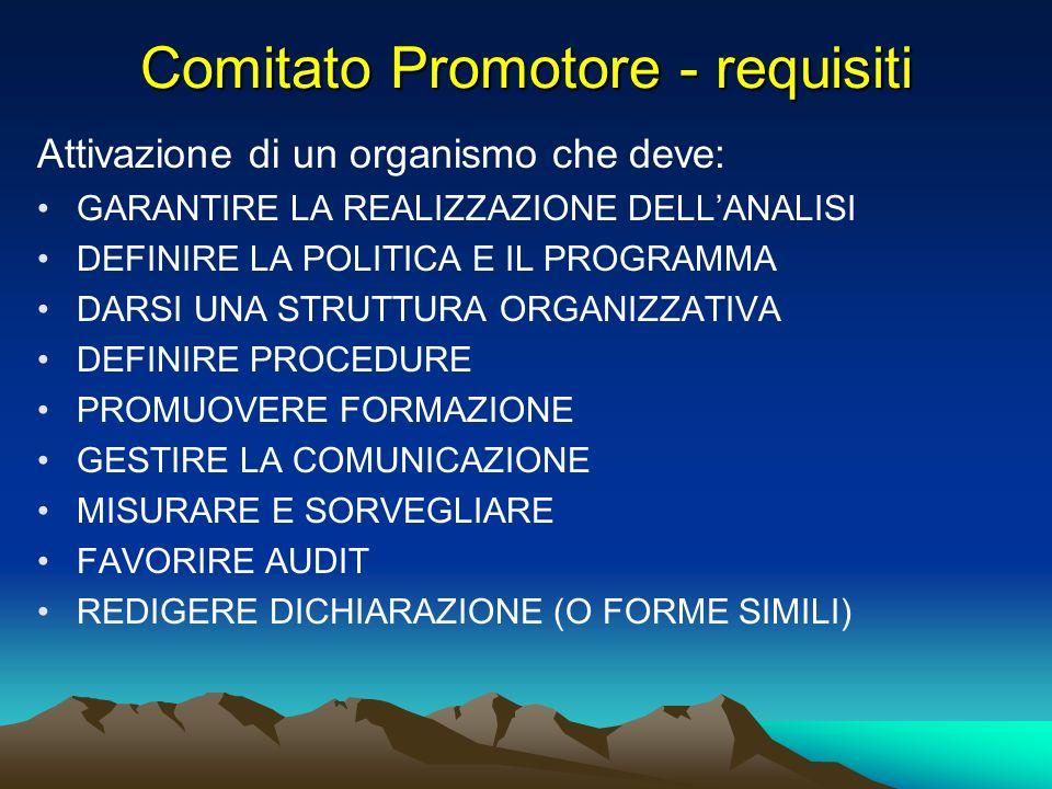 Comitato Promotore - requisiti Attivazione di un organismo che deve: GARANTIRE LA REALIZZAZIONE DELLANALISI DEFINIRE LA POLITICA E IL PROGRAMMA DARSI
