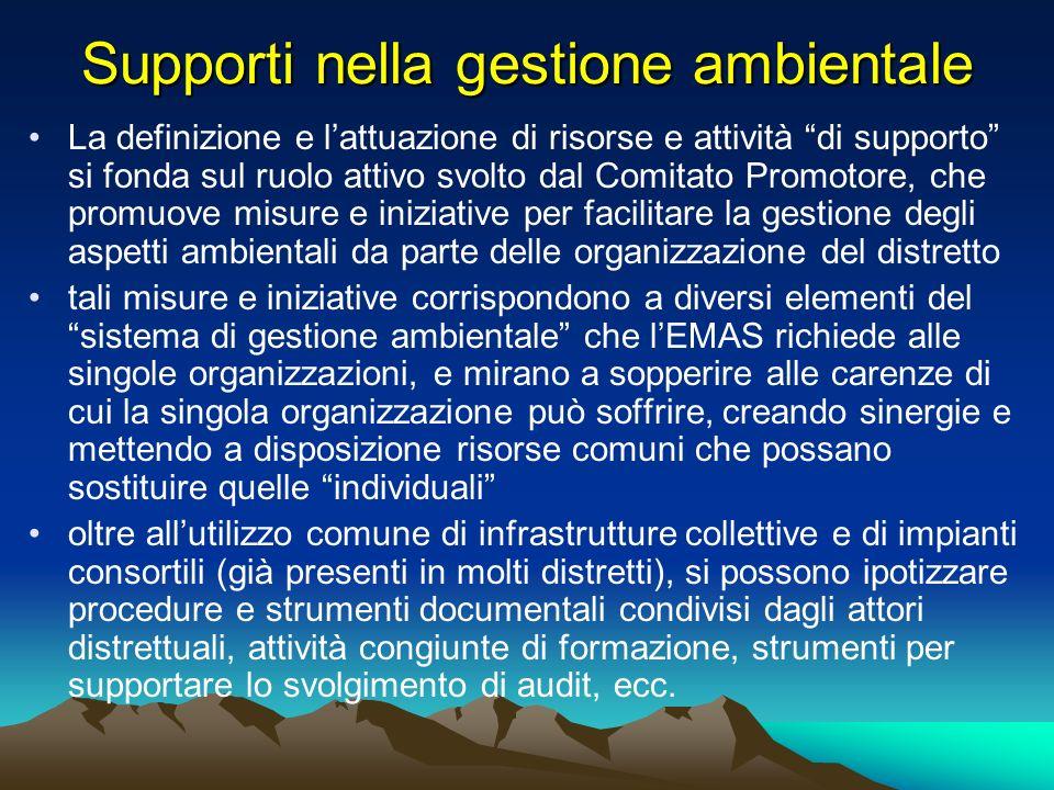 Supporti nella gestione ambientale La definizione e lattuazione di risorse e attività di supporto si fonda sul ruolo attivo svolto dal Comitato Promot