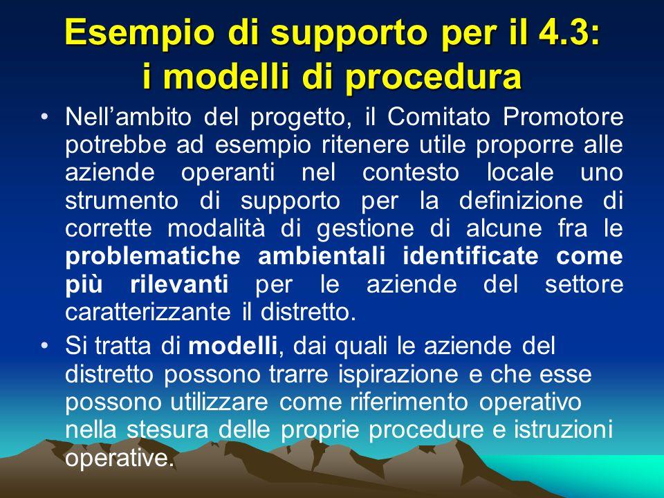 Esempio di supporto per il 4.3: i modelli di procedura Nellambito del progetto, il Comitato Promotore potrebbe ad esempio ritenere utile proporre alle