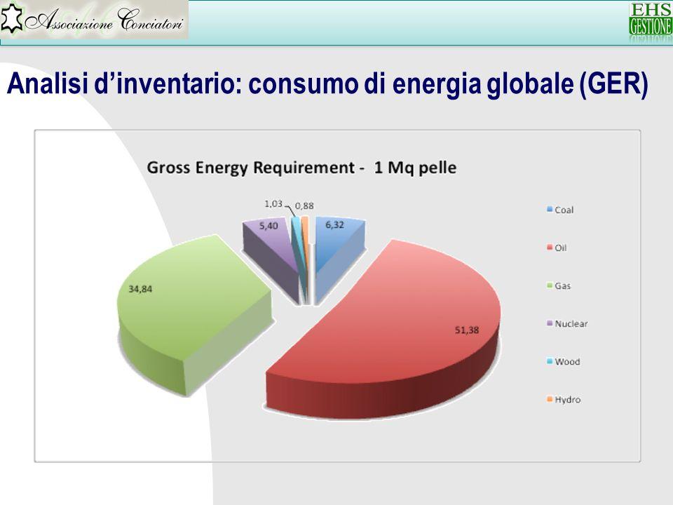 Analisi dinventario: consumo di energia globale (GER)