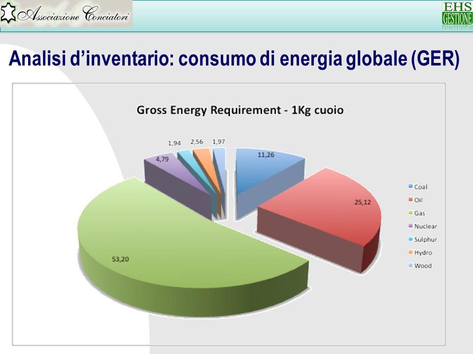 Analisi dinventario: risorse naturali senza contenuto energetico per 1 Mq di pelle (La categoria Risorse naturali senza contenuto energetico non include l acqua e i gas atmosferici)