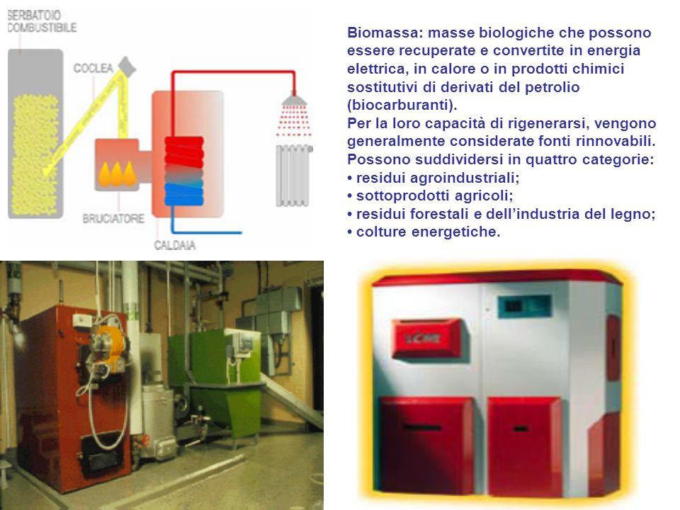 Biomassa: masse biologiche che possono essere recuperate e convertite in energia elettrica, in calore o in prodotti chimici sostitutivi di derivati del petrolio (biocarburanti).