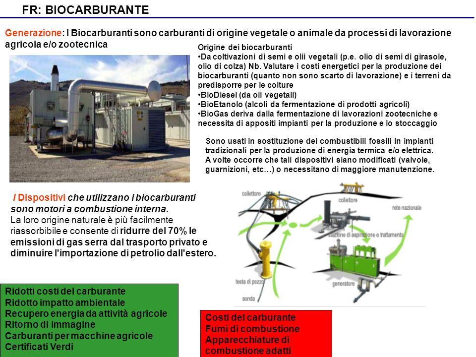 FR: BIOCARBURANTE Generazione: I Biocarburanti sono carburanti di origine vegetale o animale da processi di lavorazione agricola e/o zootecnica I Disp