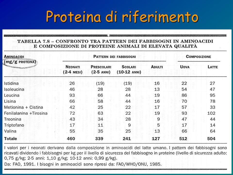 Proteina di riferimento