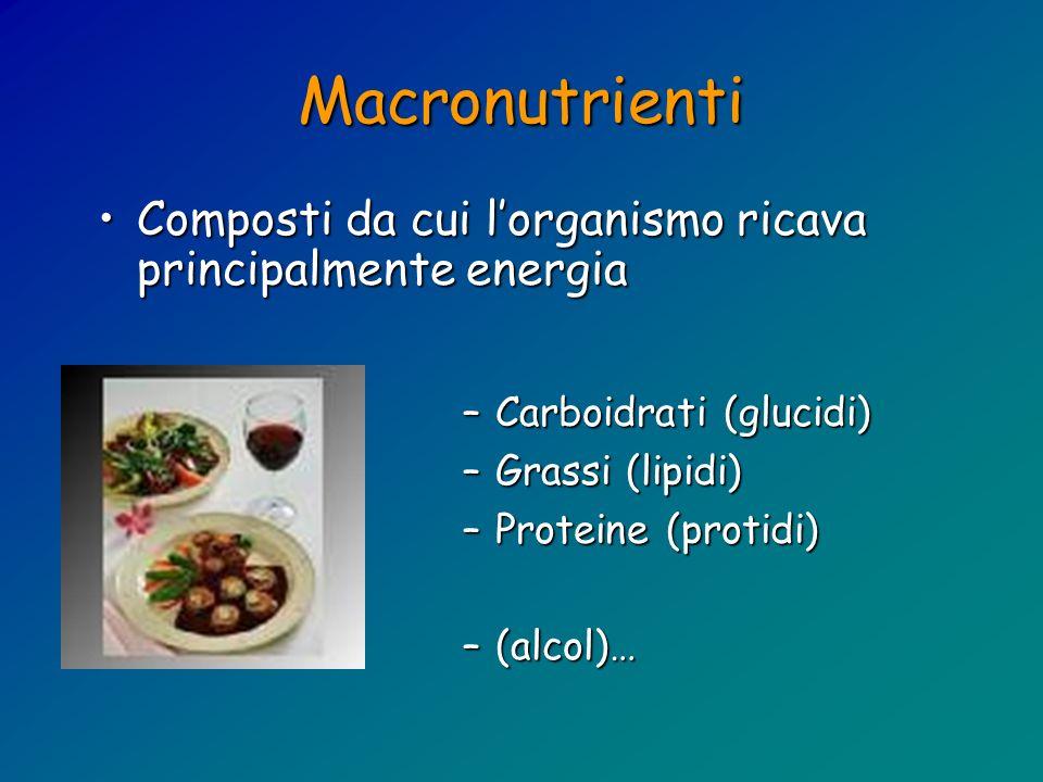 Macronutrienti –Carboidrati (glucidi) –Grassi (lipidi) –Proteine (protidi) –(alcol)… Composti da cui lorganismo ricava principalmente energiaComposti