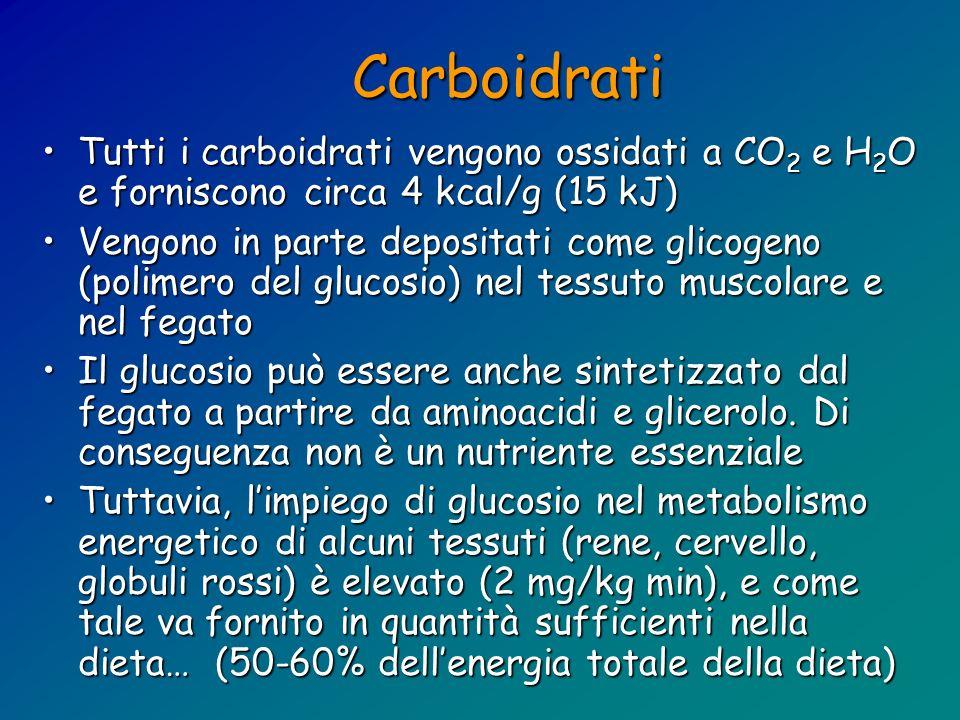 Carboidrati Tutti i carboidrati vengono ossidati a CO 2 e H 2 O e forniscono circa 4 kcal/g (15 kJ)Tutti i carboidrati vengono ossidati a CO 2 e H 2 O
