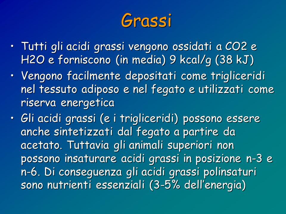 Grassi Tutti gli acidi grassi vengono ossidati a CO2 e H2O e forniscono (in media) 9 kcal/g (38 kJ)Tutti gli acidi grassi vengono ossidati a CO2 e H2O